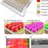 皮肤般的二维像素化全色量子点光电探测器