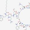 新算法揭示了人类肠道中许多以前未知的潜在抗生素