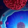 靶向筛查可有效减少前列腺癌死亡