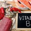素食者面临维生素B12缺乏风险的研究