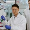 新技术可以控制基因治疗剂量