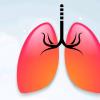 科学家研究了HAP与包括肺炎在内的肺部感染之间的联系