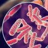美国食品和药物管理局批准了一种极端形式的耐多药结核病的疗法