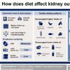 科普健康的饮食有助于预防肾病及木耳泡久了真的会有剧毒吗