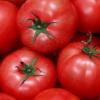 教你西红柿巴沙鱼可让女人祛斑美白及少吃油腻食物避免伤害肝脏