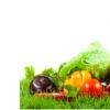 科普家长需测评饮食营养素及调整饮食营养可御寒
