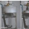 气泡捕捉表面有助于去除泡沫
