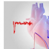 研究表明 心脏中的低氧水平使人容易患心律不齐