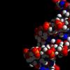 科学家发现癌症的许多基因驱动因素