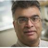 β细胞的脂质信号传导可增强炎症性巨噬细胞极化