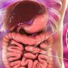 溃疡性结肠炎和肠道微生物缺失