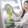 类风湿关节炎的分子难题中增加了新的内容