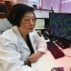 肿瘤的结构框架还提供免疫保护