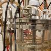 生产廉价生物燃料的新生态过程