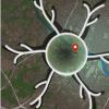 关键的大脑区域如何结合视觉和空间信息来导航