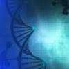 粗心的癌细胞可能会感染未来的药物