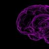 脑生物学如何促进神经性厌食症患者的饥饿