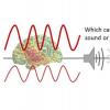 阿尔法脑电波的强度表明您是否会做出有偏见的决定