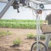 科学家现在更容易筛选高产农作物性状的技术
