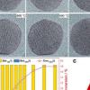 科学家揭示了二氧化碳加氢中Ni-Au核壳的隐藏催化表面