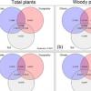 研究人员调查了非洲之角植物多样性的空间格局