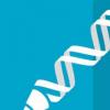 使用CRISPR寻找肌肉营养不良的治疗方法