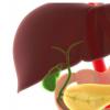 抗氧化剂普瑞巴林可减轻慢性钙化性胰腺炎的疼痛