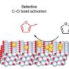 使用选择性表面改性催化剂提升生物质
