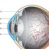 用于早期发现某些视力问题的设备