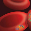 研究人员确定了使疟原虫具有耐药性的分子机制