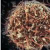 埃博拉病毒分析发现病毒尚未变得更加致命