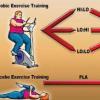 新研究表明运动可改善非酒精性脂肪肝