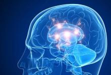 遗传因素和神经因素影响多动症的诊断