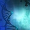抑制癌症基因显示出迈向跳动神经母细胞瘤的一步