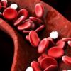 探索镰状细胞病患者对HIV的抗药性机制