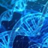 指导进化以在发现早期发现潜在药物