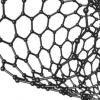 嵌入在叶子中的碳纳米管可检测植物受损时产生的化学信号