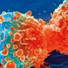 研究人员创造了更准确地检测乳腺癌的新方法
