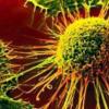 新生儿HBV疫苗可降低肝癌风险