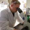 癌症耐药性研究引发免疫危险信号