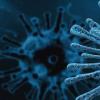 科学家为病毒蛋白外壳组装提供了新的思路