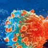 人子宫被生命早期出现的具有癌症驱动突变的克隆定居
