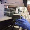 在罕见的子宫癌中发现对标准化学疗法反应不良的基因特征