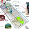 廉价的便携式检测器可在数分钟内识别出病原体