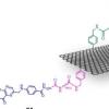 石墨烯的多功能化用于分子靶向癌症治疗