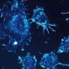 博弈论表明更有效的癌症治疗