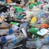 工程微生物可以生产比植物基塑料更低的成本