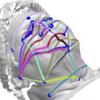 研究表明3-D面部照片可能是睡眠呼吸暂停筛查工具