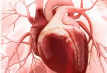 心力衰竭和射血分数降低的患者的Vericiguat