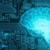 研究进展动态功能性神经影像的高密度脑电图